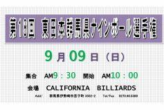 第18回 東日本群馬9ボール:要項
