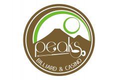 広島市のビリヤード場「Peaks」の新オーナー募集中!!