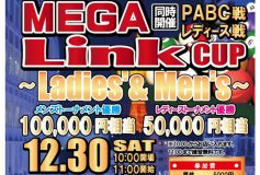 MEGA Link CUP ~Ladies' & Men's~(30日)